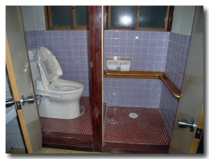 Toilet_042_02_600_60