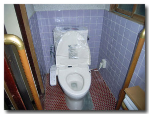 Toilet_042_03_600_60
