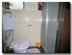 Toilet_043_02_600_60