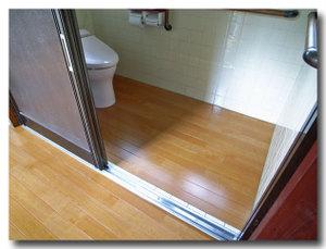 Toilet_043_04_600_60