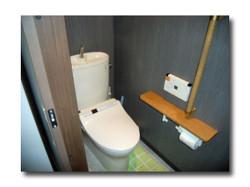 Toilet_059_02_600_60