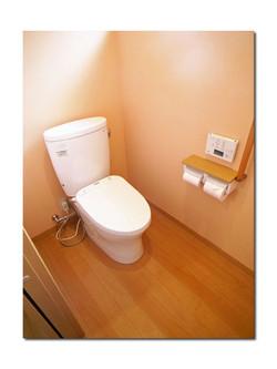 Toilet_063_04_600_60