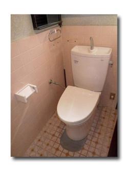 Toilet_067_02_600_60
