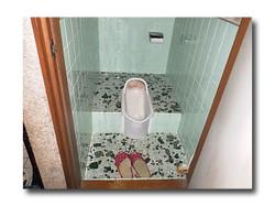 Toilet_068_01_600_60