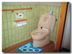 Toilet_002_03_01_600_60_1